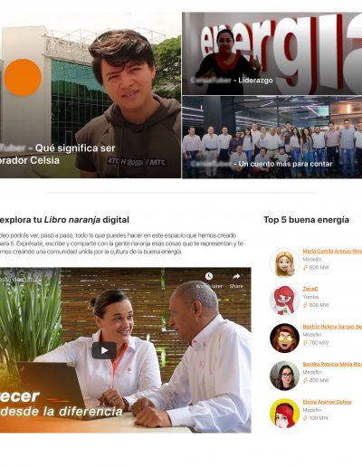 video-1-columna copy